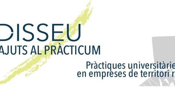 Oberta la convocatòria 2019 per a empreses del programa d'Ajuts al Pràcticum d'Odisseu