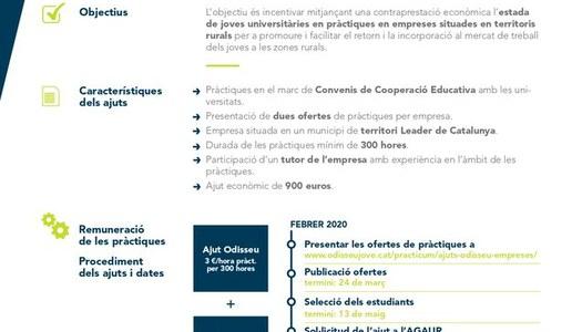 Les empreses ja poden demanar els Ajuts al Pràcticum d'Odisseu 2020